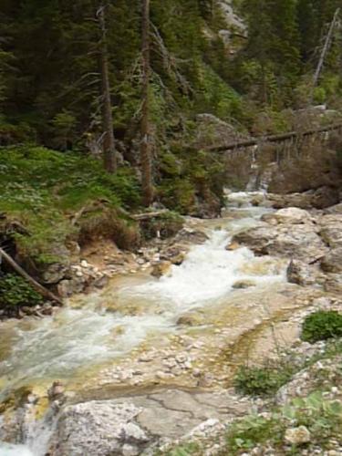 [2013-11-10] Späthherbst-Wanderung vom Hofmahd nach U.lb.F. im Walde