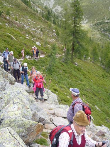[2014-08-21] Almenwanderung über die Innerschwemm und dem Steinbergl  nach Kaserfeld