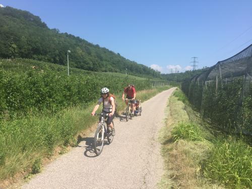[2017-05-28] Radfahren am Kalterer See