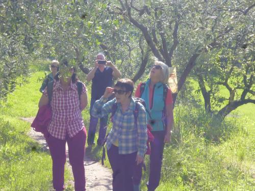 [2019-05-23] Wanderung am Gardasee (Bus)